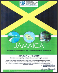 Jamaica Community Health Promotion